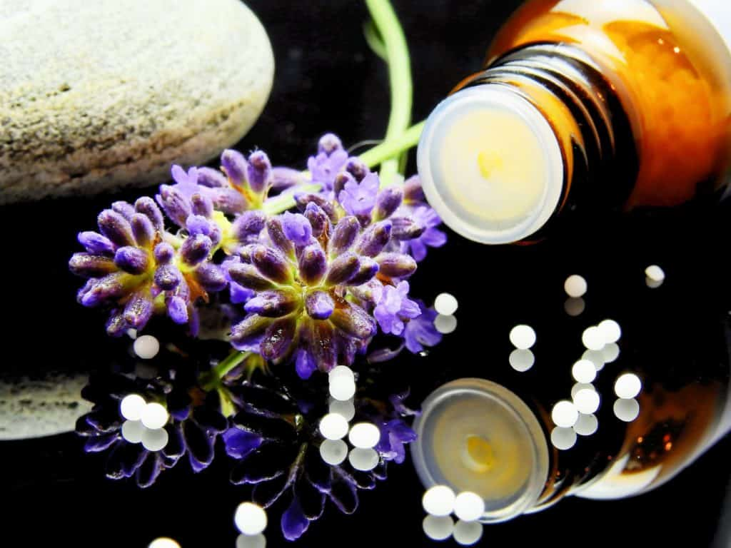 Homeopathy vs. Holistic: Understanding Their Different Healing Approach
